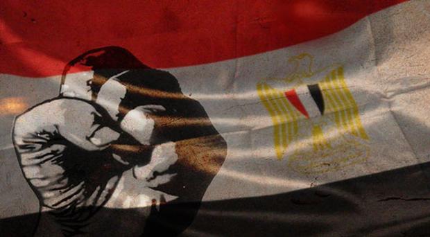 النجوم العرب والمصريين عبّروا عن سعادتهم لإسقاط مرسي وهذه تغريداتهم