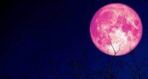 """الأرض على موعد مع """"القمر الوردي"""" الثلاثاء المقبل"""